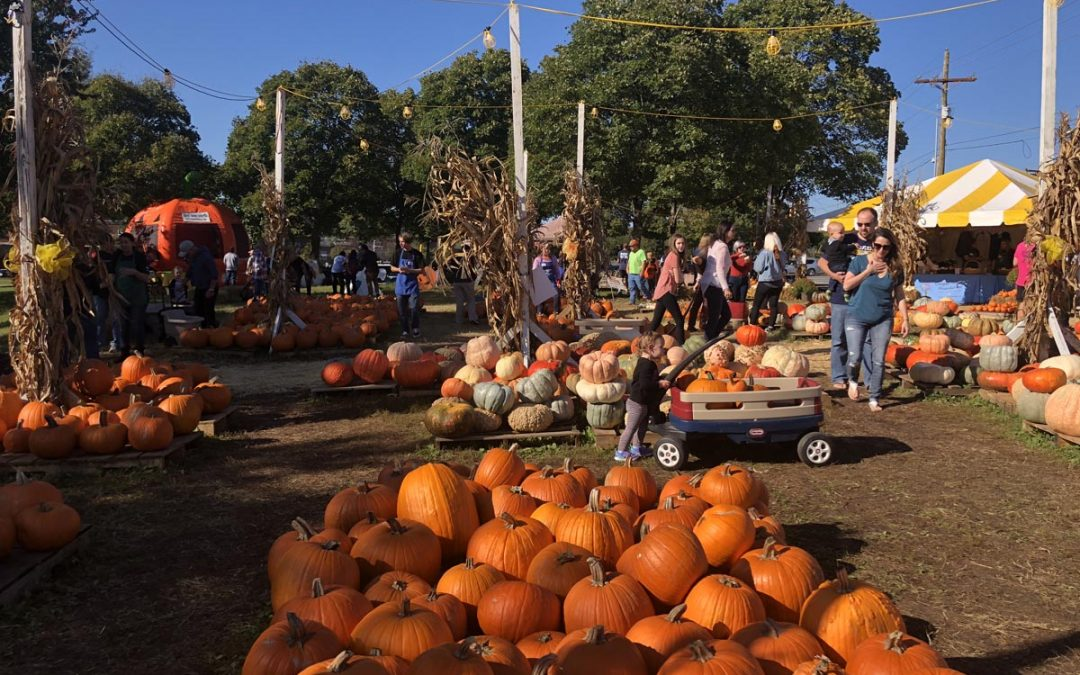 Cooper Trooper Pumpkin Patch Celebrates 10 Years in 2019